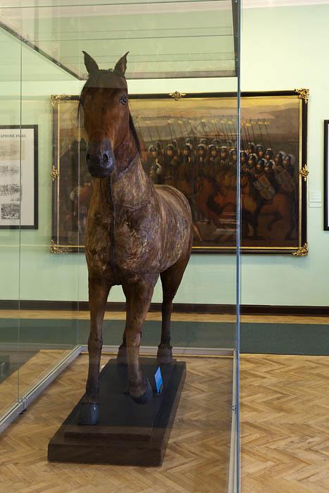 Cheb muzeum 34-D5II041
